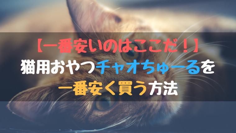 【一番安いのはここだ!】猫用おやつチャオちゅーるを一番安く買う方法